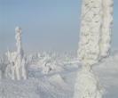 sibirischer Fichtelberg